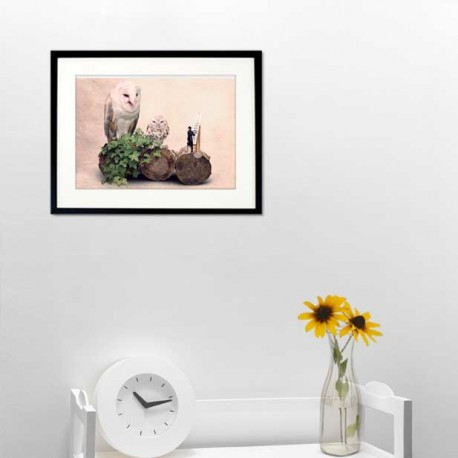 The owl optician - Fine Art photography - Original Art photography - Tiny Trades series