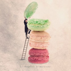 The macaroons hatter - Fine Art photography - Original Art photography - Tiny Trades series