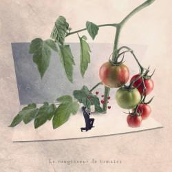 Le rougisseur de tomates - Photographie d'art - Photographie d'art couleur - Les Tout Petits Métiers