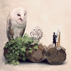 The owl optician - Fine Art photography - Tiny Trades series