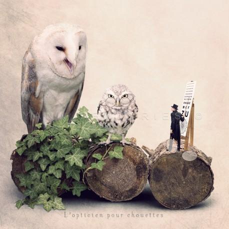The owl optician - Fine Art photography - Original Art photography - Tiny Trades series