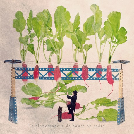 The radish end whitener - Fine Art photography - Original Art photography - Tiny Trades series