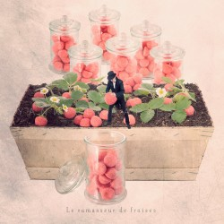 The strawberry-candy picker - Fine Art photography - Original Art photography - Tiny Trades series