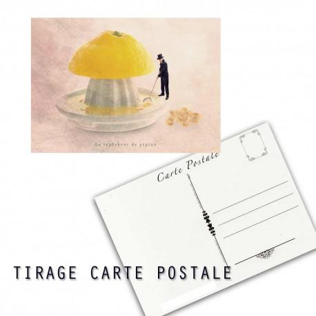 Carte postale humoristique citron, les tout petits métiers