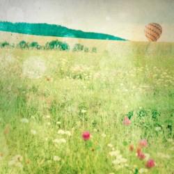 Jour 50 Krtov Bucolic - Photographie d'art - Photographie d'art couleur - 80 jours en ballon