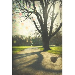 Day 11 London The park, Fine Art color print