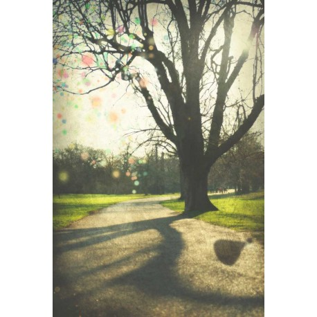 photo de Londres, Le parc, photographie artistique