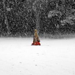 Blizzard - Photographie d'art - Photographie de paysage couleur