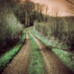 Le chemin des dames, photographie artistique de paysage