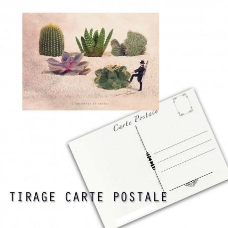 Carte postale humoristique cactus