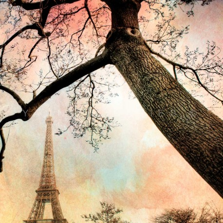 Sunset Eiffel Tower, Fine Art Paris print
