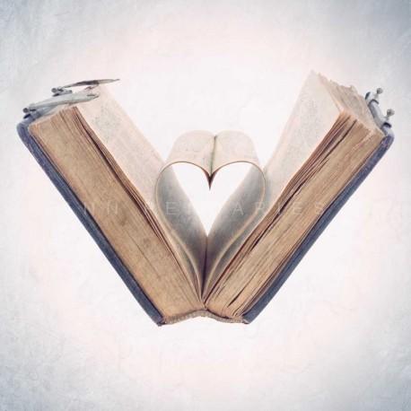 photo de coeur dans livre, The book of love, photographie artistique nature morte
