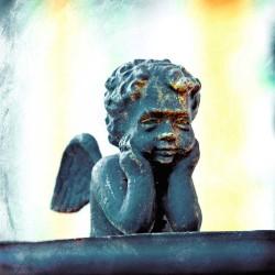 Cupidon cherub, photographie artistique nature morte