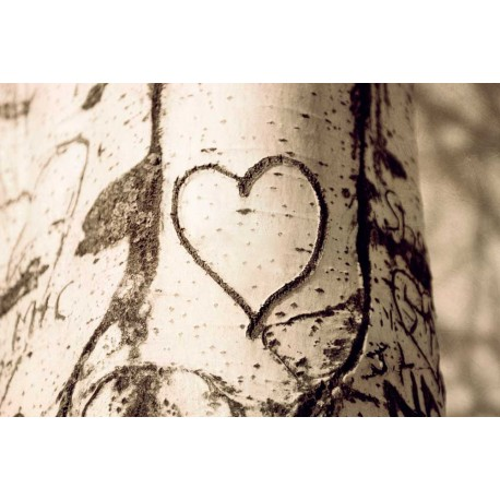 The tree heart, Fine Art still life photography print