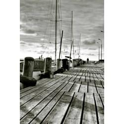 photo de pologne, Tolkmicko Pologne, photographie artistique noir et blanc