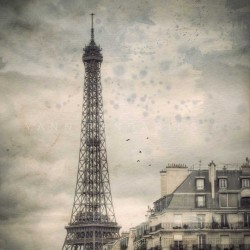 Eiffel Tower in the mist, Fine Art black-white photography print