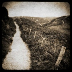 The Path, Fine Art black-white photography print
