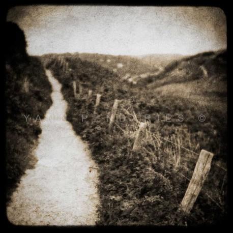 photo en noir et blanc normandie, Le chemin, photographie artistique noir et blanc