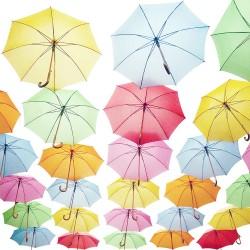 Les parapluies - Photographie d'art - Photographie couleur